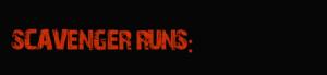 scavenger run